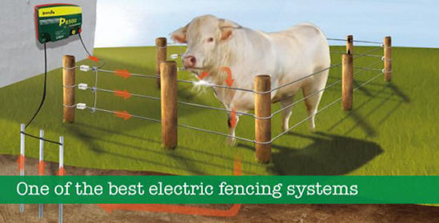 Patura Electric Fencing